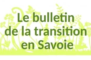 bulletin-transition-photospipf6b0ab8a8b421fed604c6bba1e00bd37.jpg
