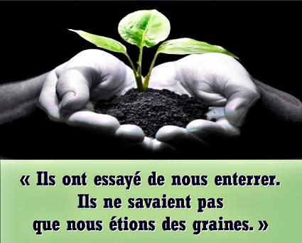 enterre_-graines.jpg